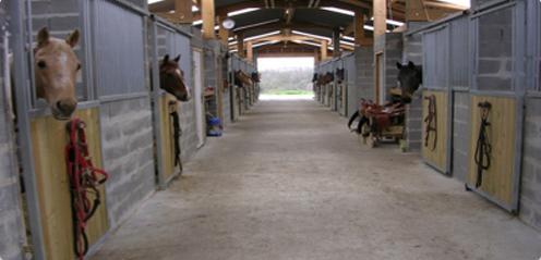 Pensions pour chevaux dans l'Eure, près de Bernay et d'Évreux (28 boxes 3x4m en vis-à-vis)